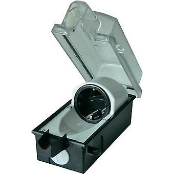 Surface-mount socket Lockable IP44 Black, Transparent interBär 9015-001.01