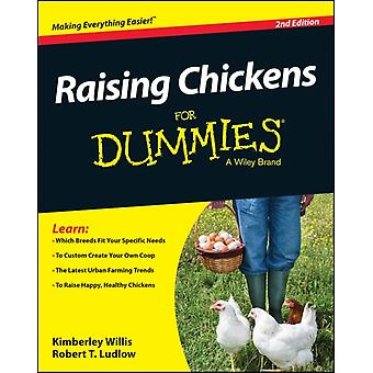 Raising Chickens For Dummies (Paperback) by Willis Kimberly Ludlow Robert T.