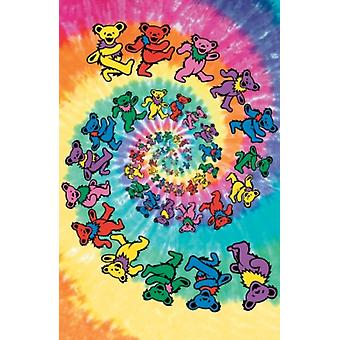 Grateful Dead-ours spirale porte 40 x 60 Poster Poster Print