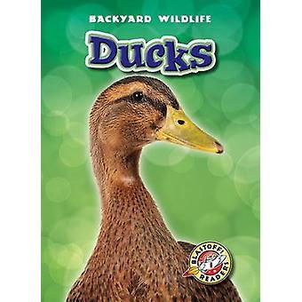 Ducks by Derek Zobel - 9781600145964 Book