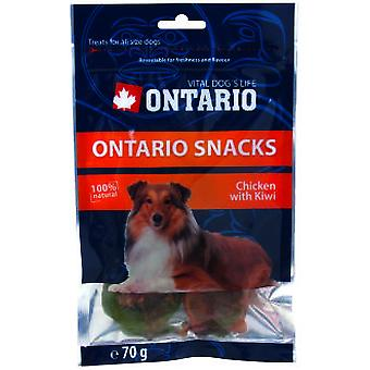 Ontario Dog Snack Chicken with Kiwi 70g (Dogs , Treats , Eco Products)