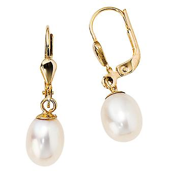 Earring Pearl Earring boutons, 585 / - Gelbgold, 2 Freshwater Pearl, height 26 mm