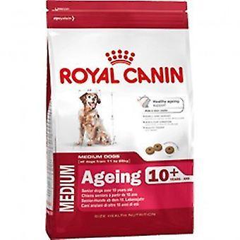 Royal Canin en medio de perro mezcla de alimento seco de 10 + 3kg del envejecimiento