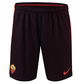 2018-2019 AS Roma Nike Team Training Shorts (Burgund)