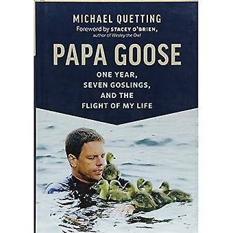 Papa Goose