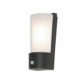 Modern Outdoor Security Wall Light with PIR Sensor IP65 Rated
