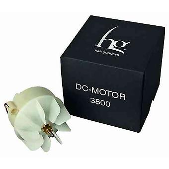 Hg Hair Dryer Motor Hg Eco-Light Dc100C