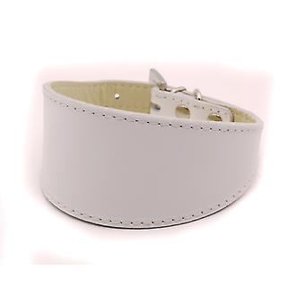 Doggy Things Greyhound Leather Dog Collar White 35cm