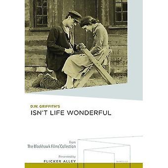 Er ikke livet vidunderlige [DVD] USA import