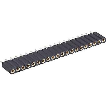 Receptacles (precision) No. of rows: 1 Pins per row: 36 BKL Electronic 10120807 1 pc(s)
