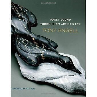 Puget Sound genom konstnärens öga