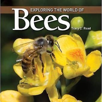 Exploring the World of Bees (Exploring the World of