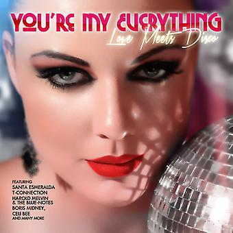 Various Artist - You're My Everything: Love Meets Disco [CD] USA import