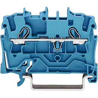 Continuity 5.20 mm Pull spring Configuration: N Blue