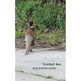 Trumbull Ave. (Made in Michigan Writers Series)