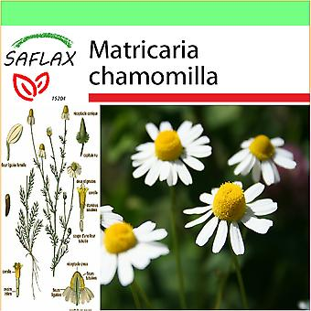 Saflax - Garden to Go - 300 seeds - Mayweed - Camomille sauvage - Camomilla - Manzanilla común - Echte Kamille