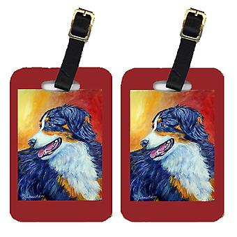 Carolines Treasures  7288BT Pair of 2 Australian Shepherd Luggage Tags