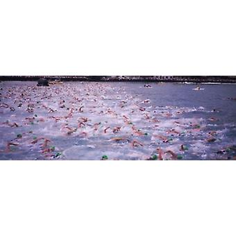 Triathlon athletes swimming in water in a race Ironman Kailua Kona Hawaii USA Poster Print