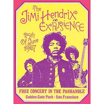 The Jimi Hendrix Experience San Francisco 1967 Poster Print by Dennis Loren (15 x 20)