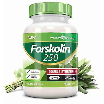 Forskolin 250 Double Strength 250mg 60 Weight Loss Capsules - 60 Capsules - Fat Burner and Metabolism Booster - Evolution Slimming