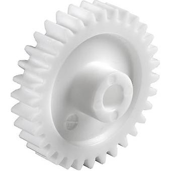 Polyoxymethylene Spur gear Reely Module Type: 1.0 Bore diameter: 6 mm No. of teeth: 30