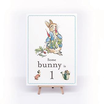 Peter Rabbit Birthday Sign Some Bunny is 1 A4 Card and Easel