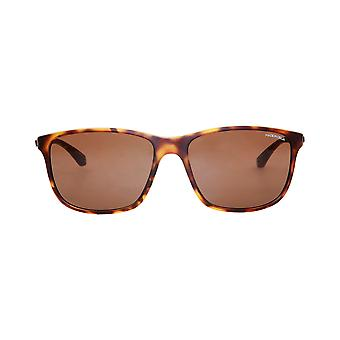 Made in Italia Sunglasses Brown Men