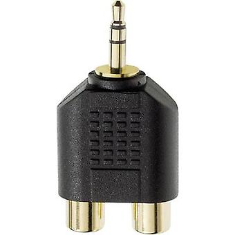 Inakustik 81381 Jack / RCA Audio/Phono Y-Adapter [1 x Klinkenstecker 3,5 mm - 2 X RCA-Buchse (Cinch)] schwarz