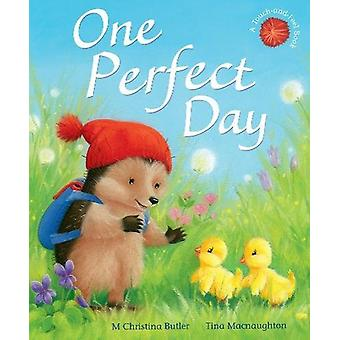 One Perfect Day by M. Christina Butler - 9781848698338 Book