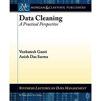 Data Cleaning: A Practical Perspective (Synthesis Lectures on Data Management)