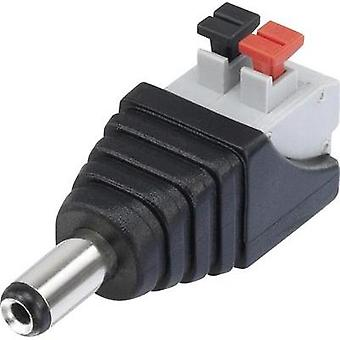 Low power connector Plug, straight 5.5 mm 2.1 mm Conrad Components QT-DC2.1M 1 pc(s)