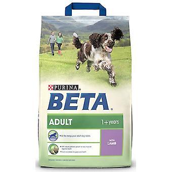 Beta Adult lam & ris 2,5 kg