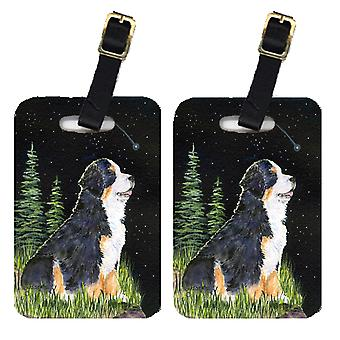 Carolines Treasures  SS8468BT Starry Night Bernese Mountain Dog Luggage Tags Pai