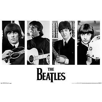 Beatles - portrety plakat Poster Print