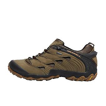 Merrell Chameleon 7 GTX Men's Walking Shoes