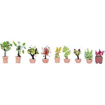 NOCH 14082 N 観賞植物