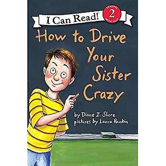 Jak prowadzić swój szalony siostra (może czytać książki 2) (czytam - poziom 2