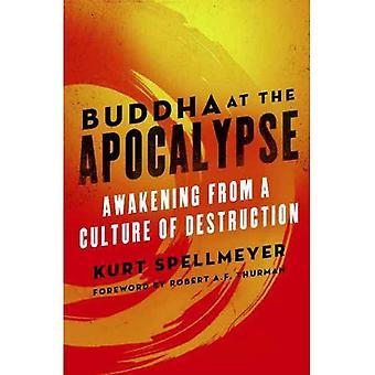 Buddha på Apokalypsen: uppvaknande från en kultur av förstörelse