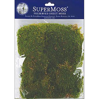 Sheet Moss 2 Ounces Pkg Green 21550