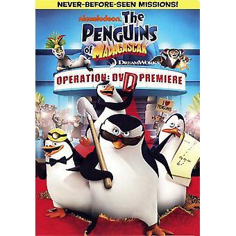 Die Pinguine aus Madagascar-Operation - DVD Premiere Movie Poster (11 x 17)