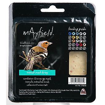 Mayfield oksetalg bakke med insekt Single (pakke med 6)
