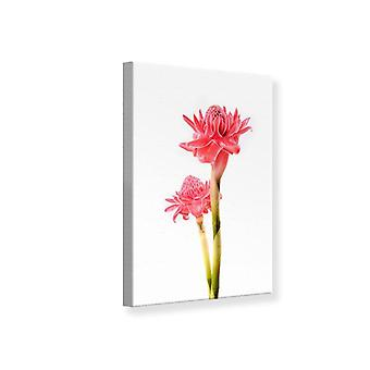 Canvas Print The Exotic