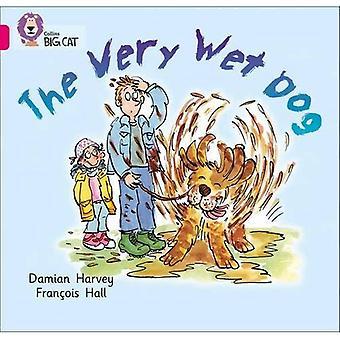 Le chien très humide: Groupe 01 a/rose un (grand chat Collins)