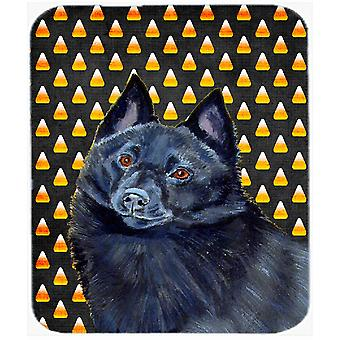 Schipperke Candy Corn Halloween Portrait Mouse Pad, Hot Pad or Trivet