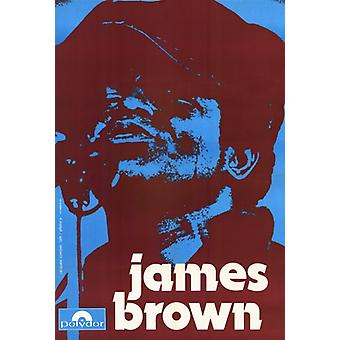 James Brown Movie Poster Print (27 x 40)
