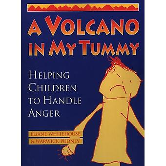 A Volcano in My Tummy: Helping Children to Handle Anger: A Resource Book for Parents Caregivers and Teachers (Paperback) by Whitehouse Eliane Pudney Warwick