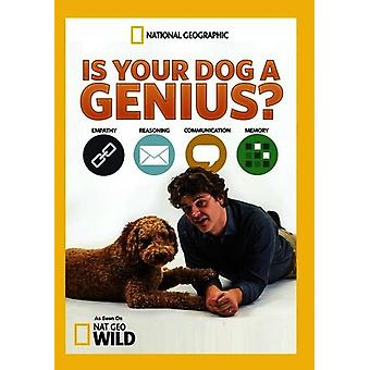 Is Your Dog a Genius? [DVD] USA import