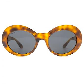 Versace Medusa Coin Temple Oval Sunglasses In Havana