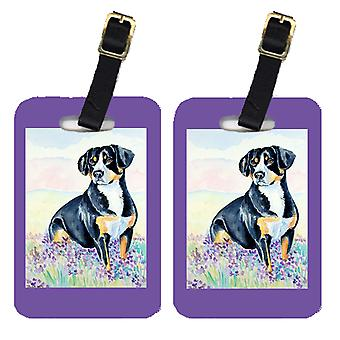 Carolines Treasures  7030BT Pair of 2 Entlebucher Mountain Dog Luggage Tags