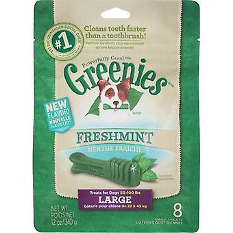 Greenies Large MINT Treat Pack 340gm